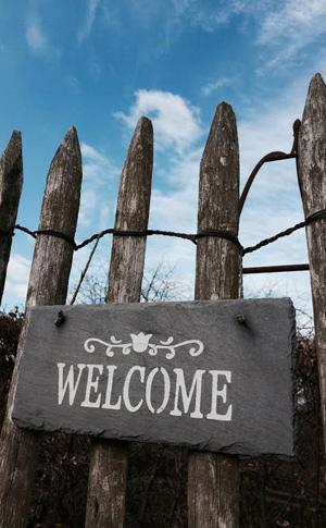 Bienvenue à la Pépinière FilRoses